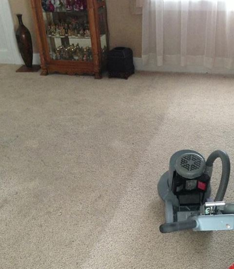Carpet cleaning maintenance chem drys professional tips wool carpet cleaning solutioingenieria Images